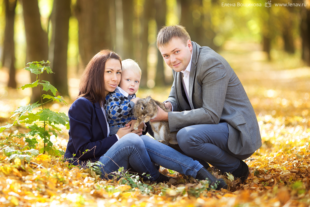 Семья Драненко