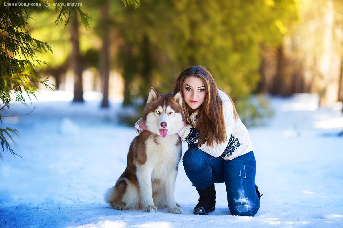 фотосессия с собаками нижний новгород