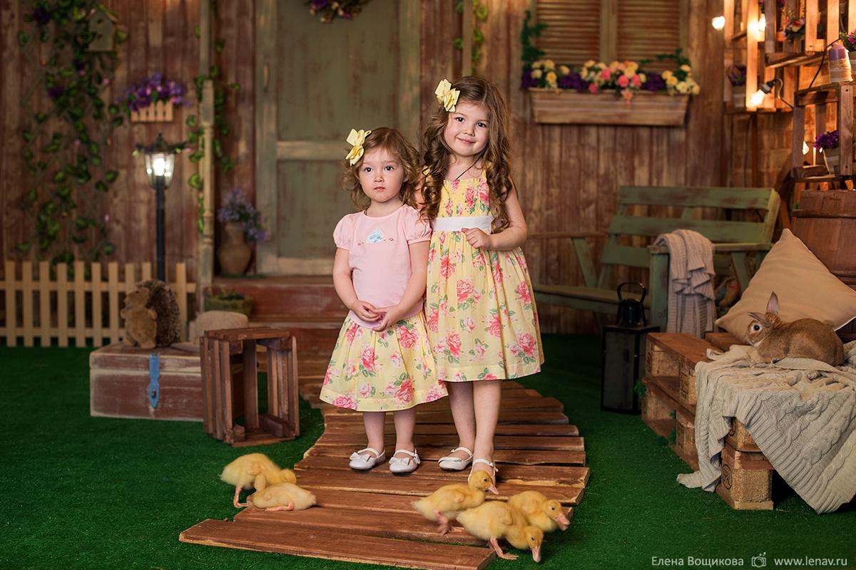 фотосессия деток с животными кроликами утятами