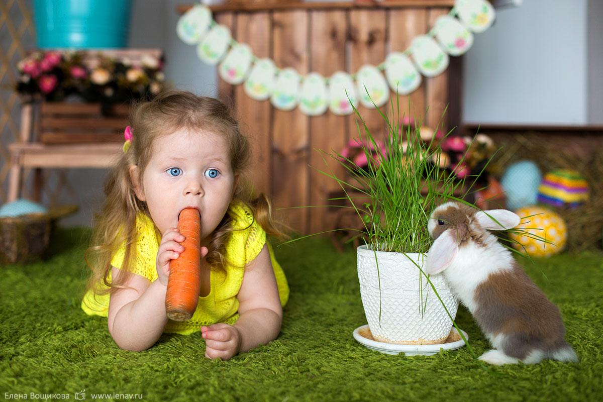 детская фотосъёмка с животными нижний новгород