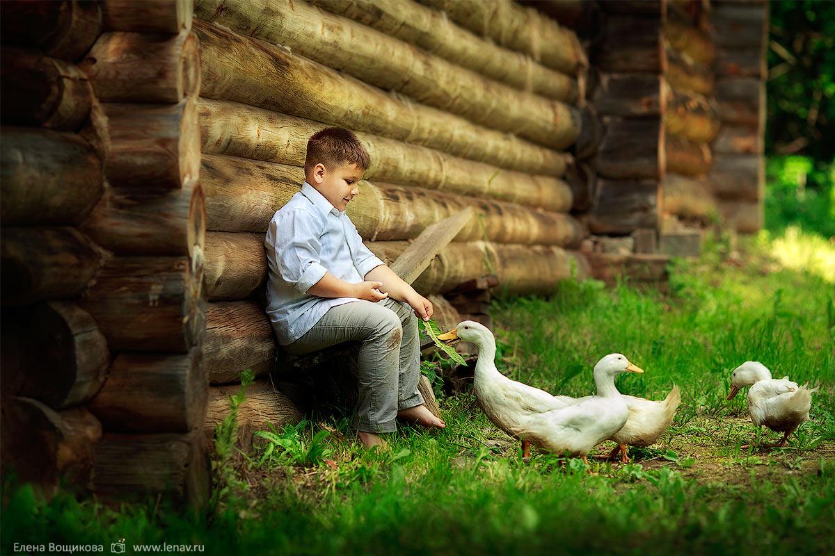 семейная фотосессия на природе с животными