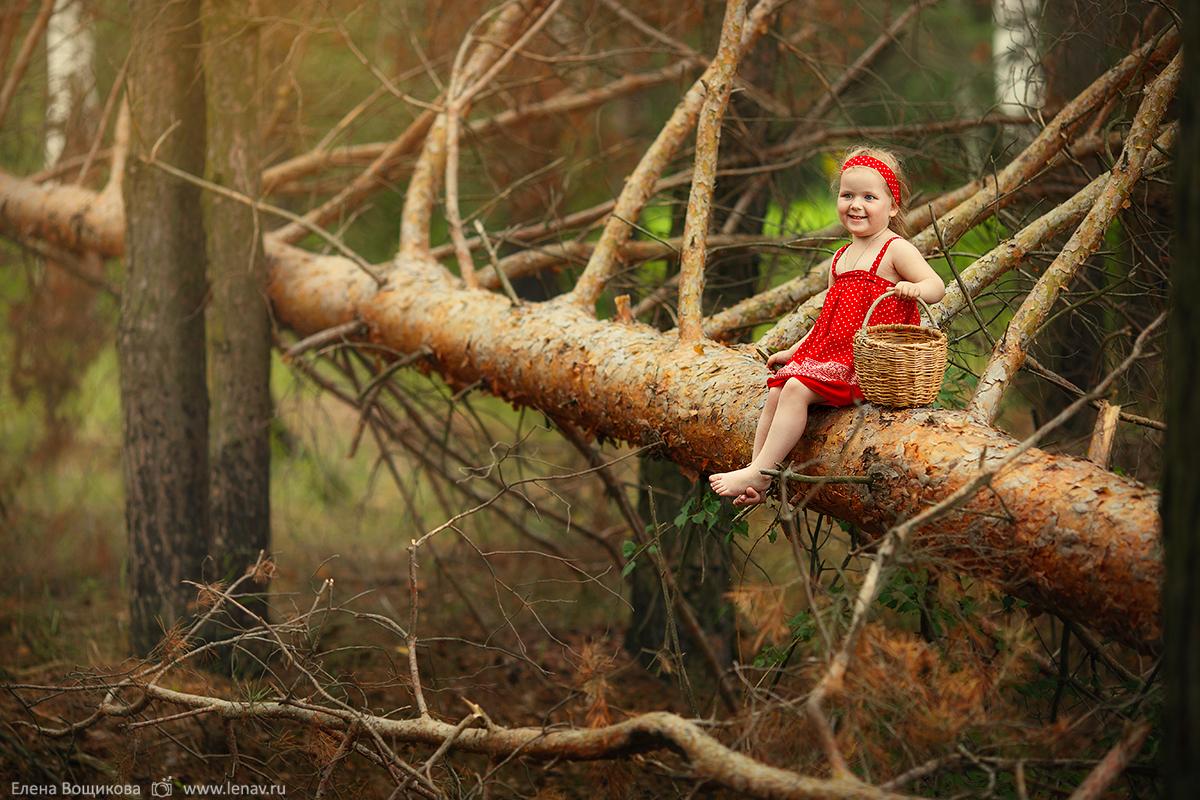 сказочная фотосессия в лесу летняя фотограф