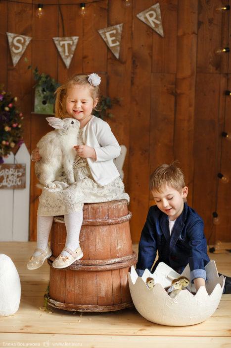 фотопроект детский на пасху в фотостудии с животными фотограф детский