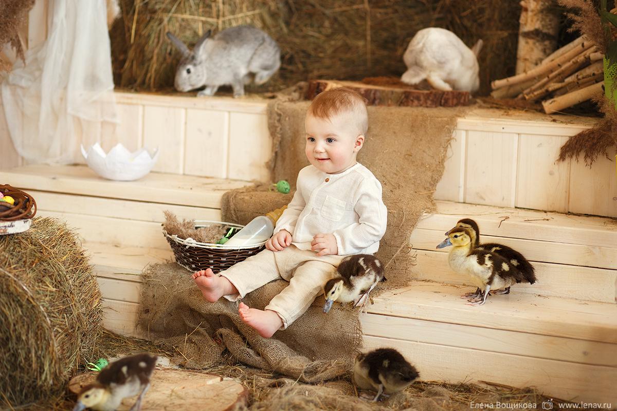пасхальная семейная детская фотосессия с утятами кроликами козленком